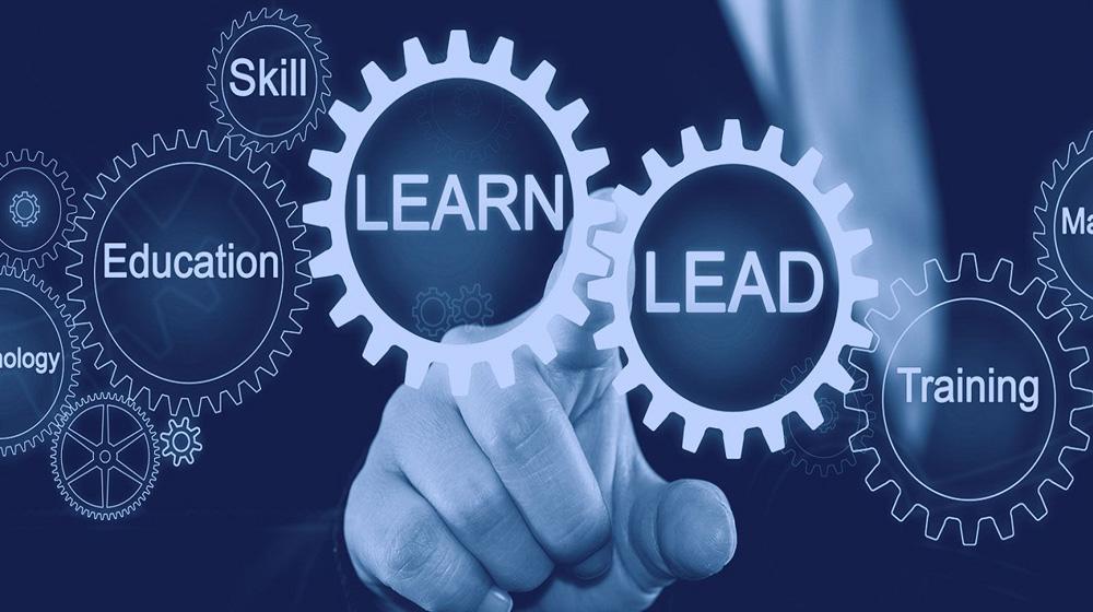 Skills Development in South Africa